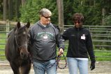 A Banner Year for Leadership with Horses
