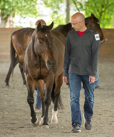 Horse Rescue Training Programs for Leaders