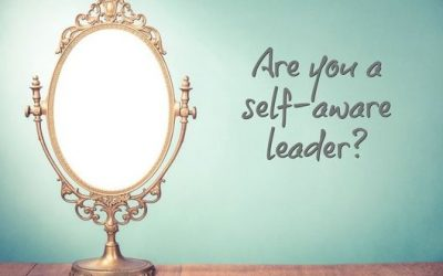 Mirror, Mirror on the Wall, Who's the Most Self Aware of All?